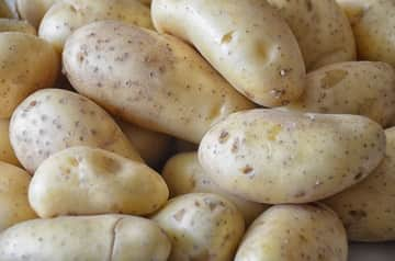 البطاطس لتسكين الم الاسنان فورا