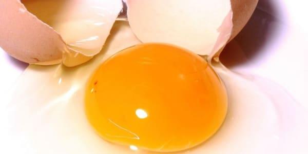 خلطة جل الصبار وصفار البيض لتغذية الشعر