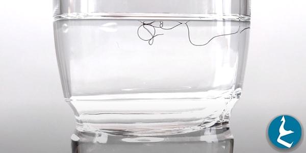 اختبار مسامية الشعر بالماء