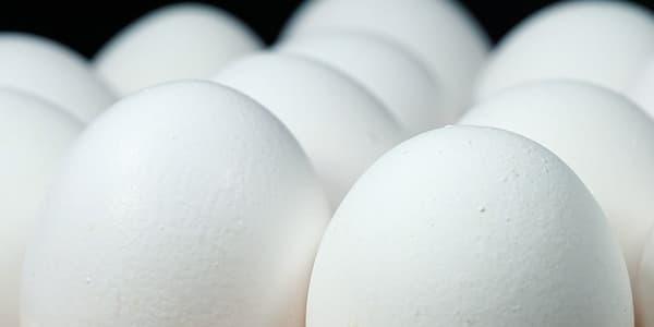 ماسك بياض البيض للوجه