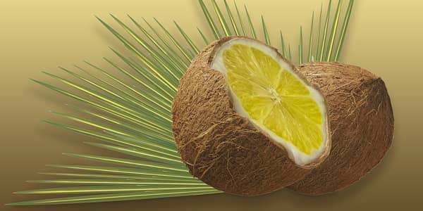 حليب جوز الهند والليمون